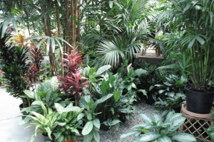 greenhouse_photo_gallery_display